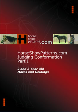 HorseShowPattern.com Judging Conformation - Part I